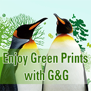 A Brand for Environmentally Compliant Products – G&G